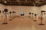 Gallery by David Barnum